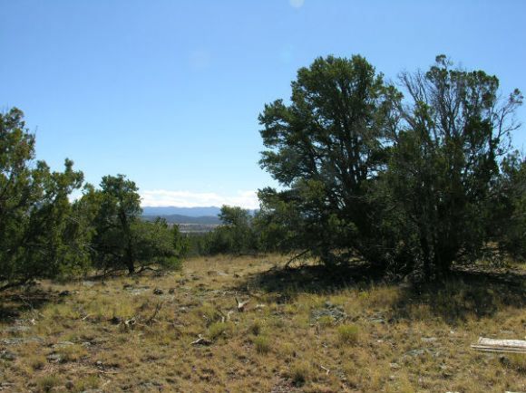 Concho View 2