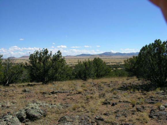 Concho View